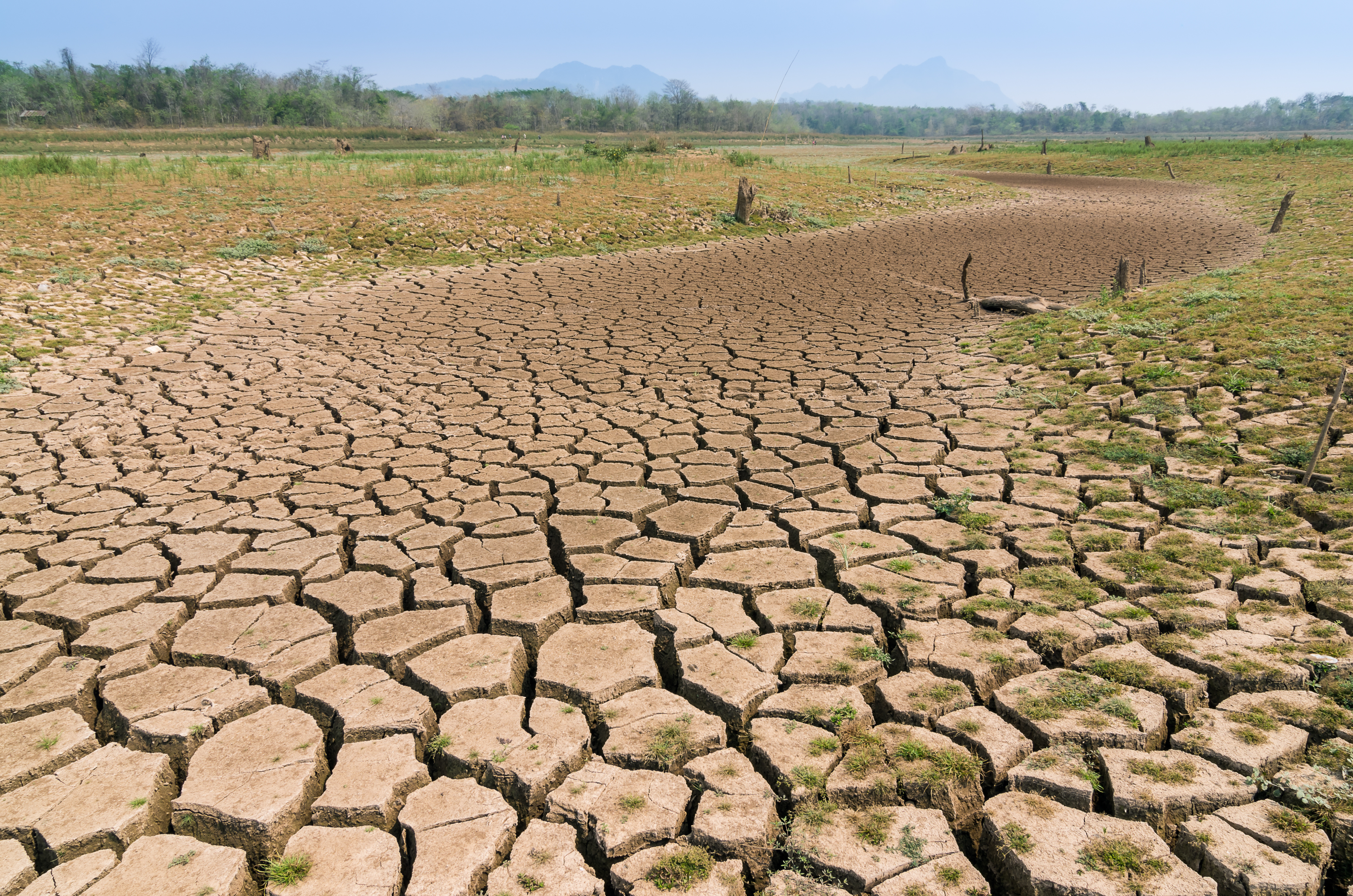 The Risks of California Drought on Communities and the Role of HOA's