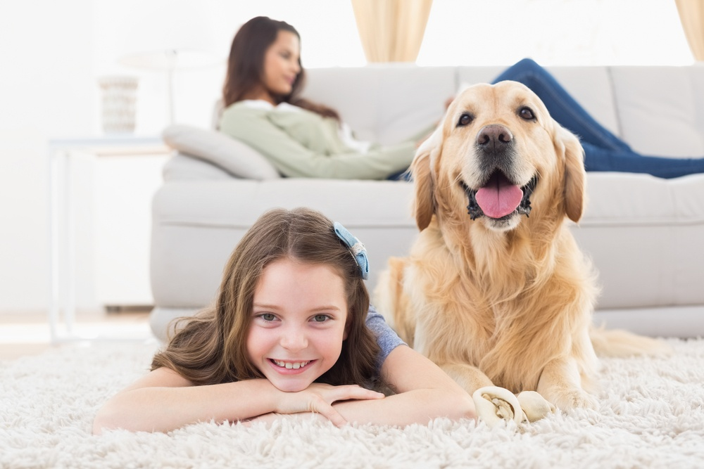 Tips for Developing a Pet Friendly Community
